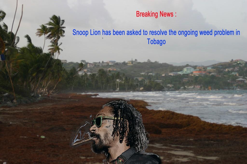 snoop_lion